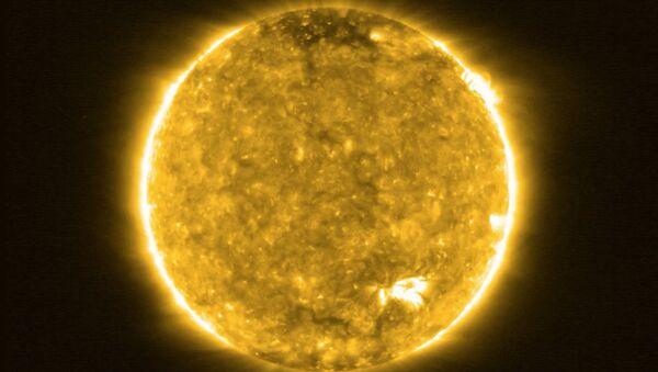 太陽 - Sputnik 日本