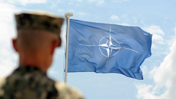 NATOの旗 - Sputnik 日本