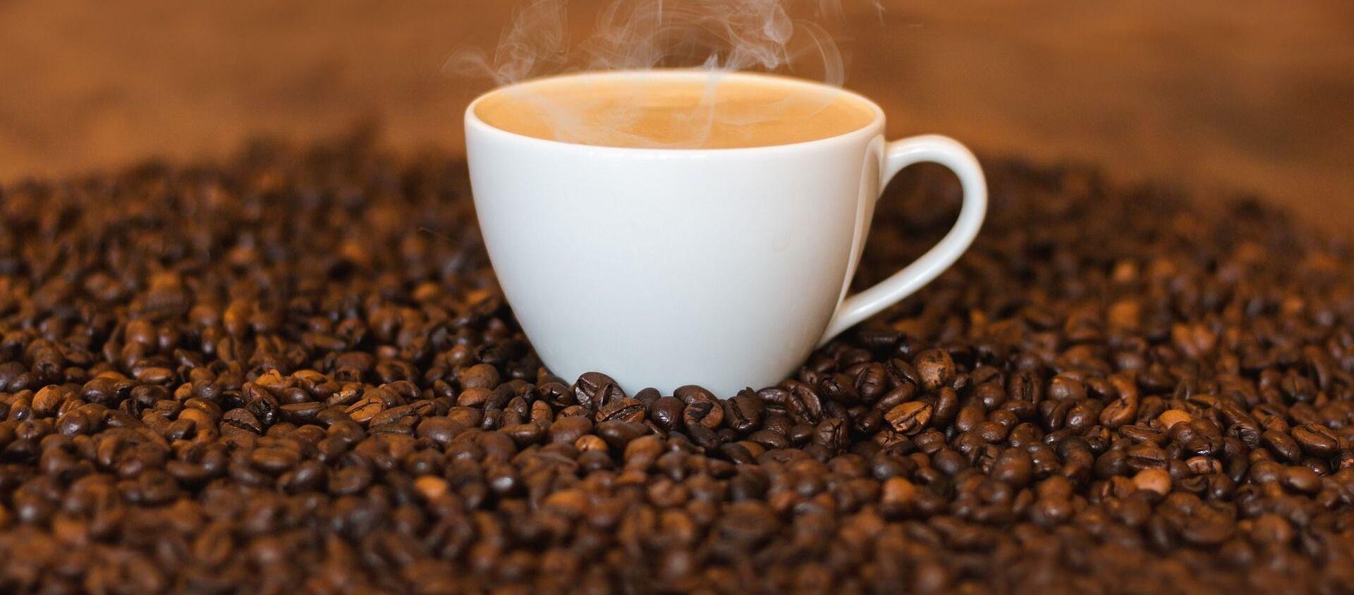 コーヒー豆アラビカが価格高騰 2016年以来 - Sputnik 日本, 1920, 13.07.2021