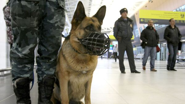 警察犬 - Sputnik 日本