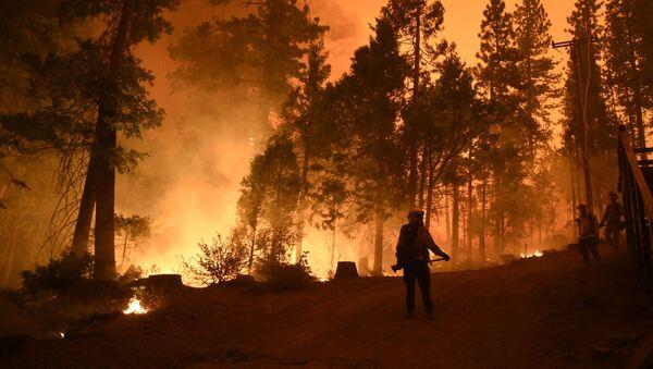 Пожарные на месте лесного пожара в штате Калифорния - Sputnik 日本