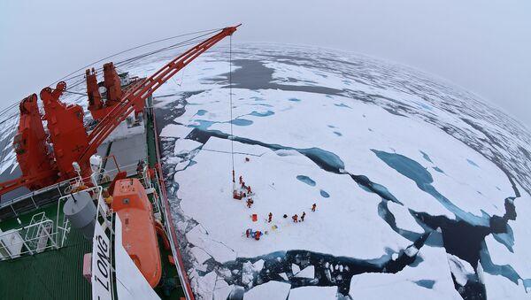 Арктические льды с борта китайского ледокола Xue Long - Sputnik 日本