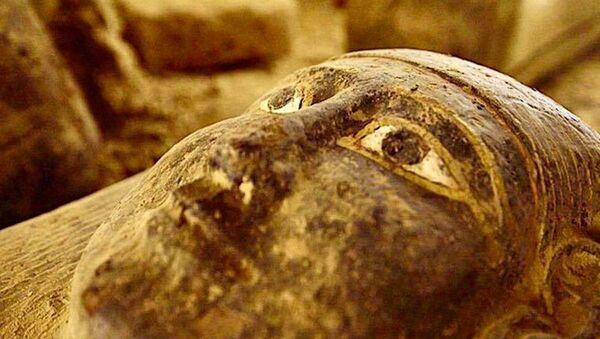 More Sealed Coffins unearthed in Sakkara. - Sputnik 日本