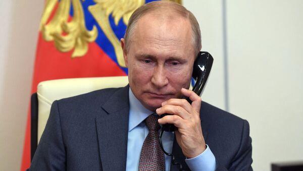 プーチン大統領、トルコ大統領と電話会談 - Sputnik 日本