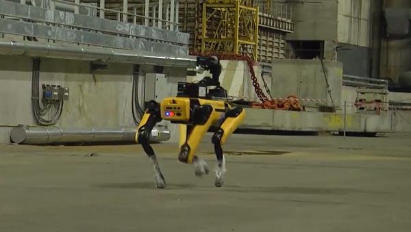 ボストン・ダイナミクス社の犬型ロボット - Sputnik 日本