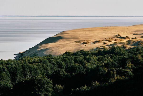 カリーニングラード州のクロニアンスピット国立公園 全長89キロメートルのクルシュー砂州が広がる - Sputnik 日本