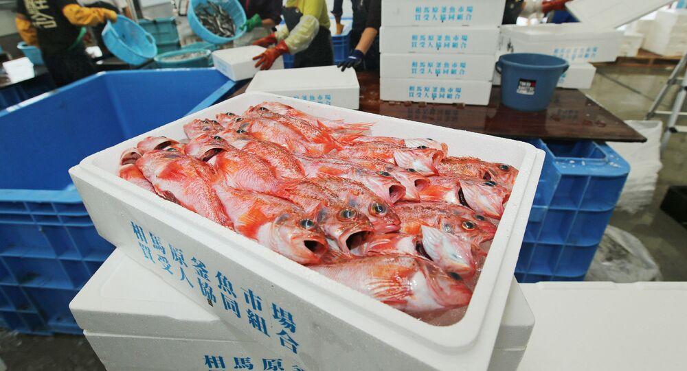 福島の魚から2年ぶりに基準値超えの放射性物質 専門家の意見