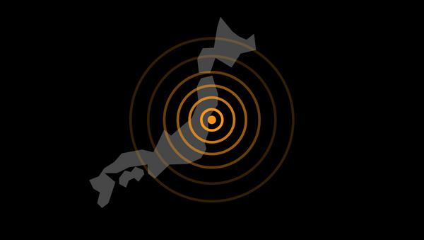 2011年東日本大震災:5つの事実 - Sputnik 日本