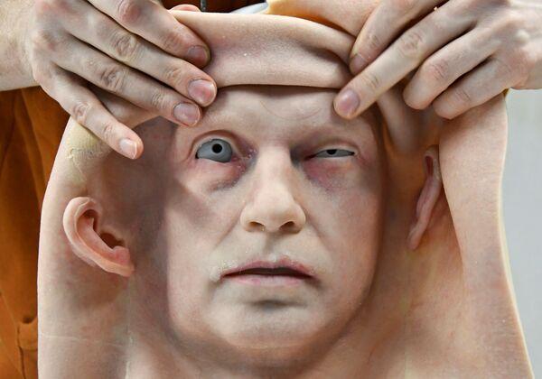 ロモロボット社のウラジオストク支店で製作された人型ロボット用の人口皮膚 - Sputnik 日本