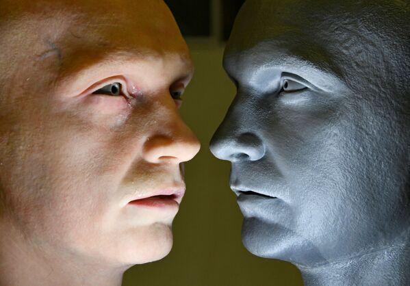 人工皮膚を取り付けた人型ロボットとそのモデル - Sputnik 日本