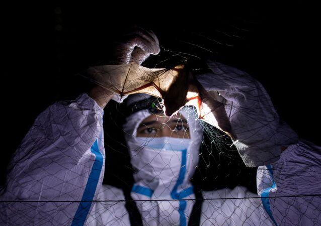 武漢研究所からのウイルス漏洩はデマ 研究チームが確信的証拠を発表