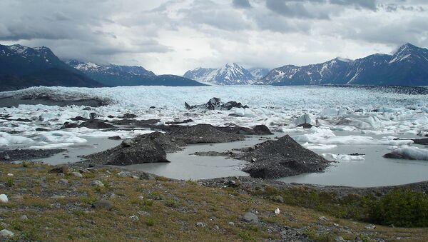 溶けだしたチベット氷床から古代のウイルスが発見 - Sputnik 日本