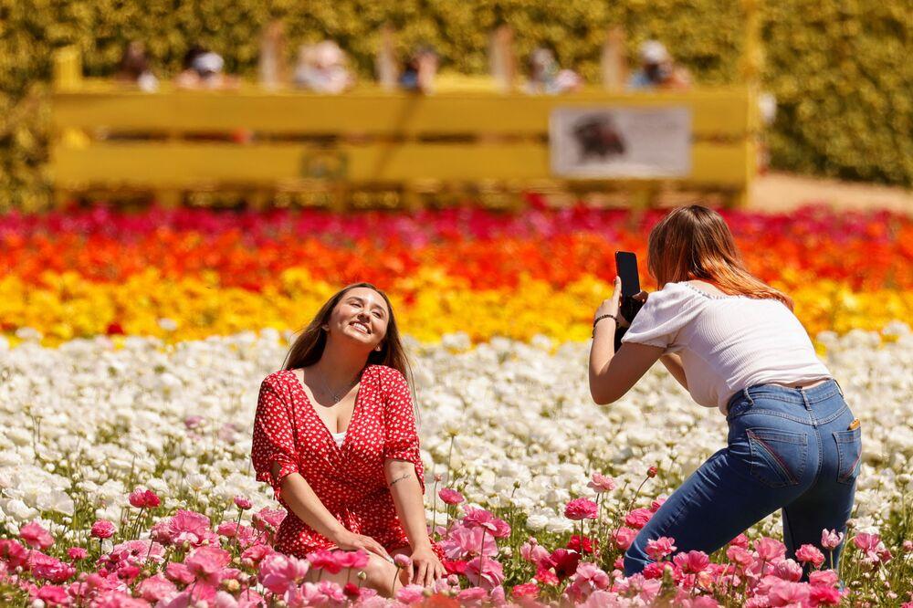 米カリフォルニア州カールスバッドで、花畑の前で写真を撮る観光客
