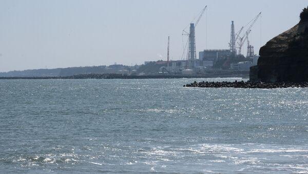 IAEA、福島第一原発の処理水海洋放出決定で国際調査団の派遣検討 - Sputnik 日本