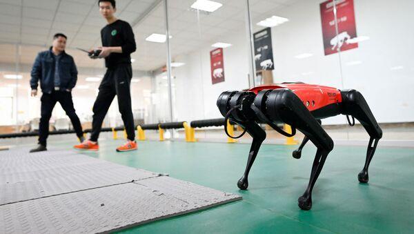 ロボットAlphaDog - Sputnik 日本