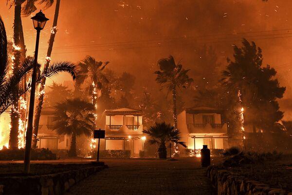ギリシャ・コリントス近郊の村で発生した山火事 - Sputnik 日本