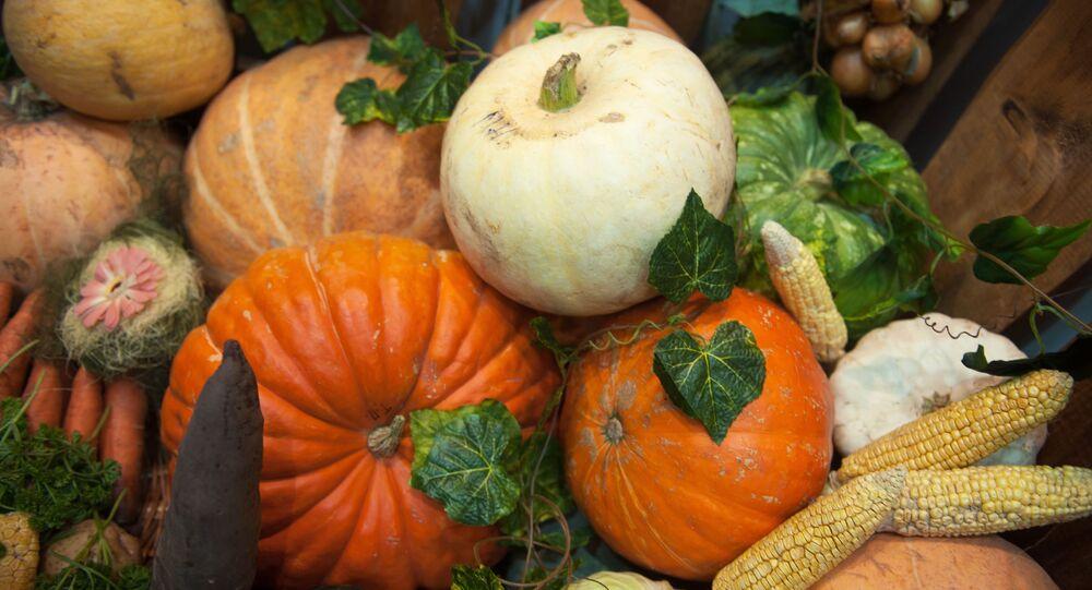 栄養士が指摘 ガンを予防する食品