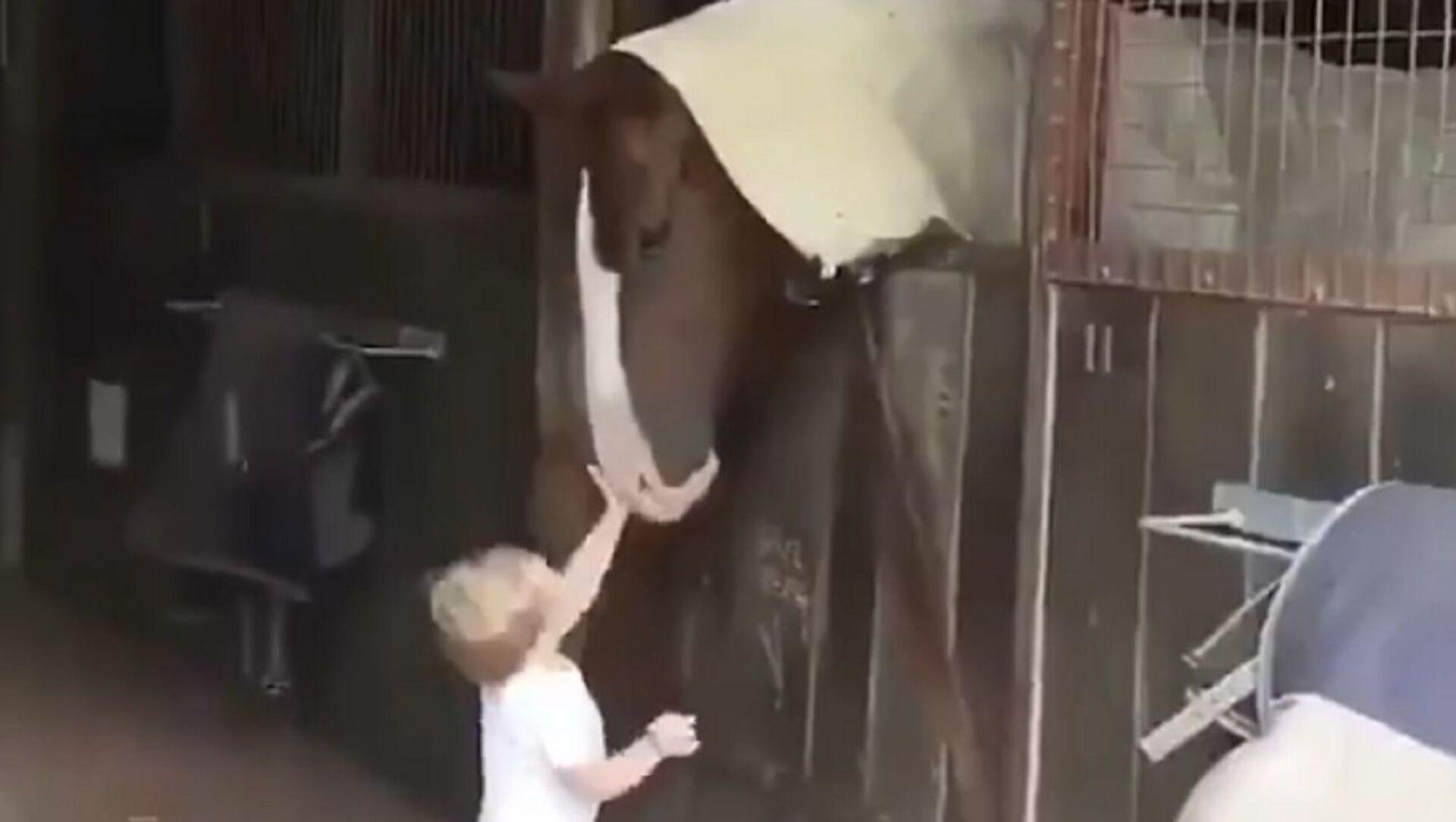 馬と子ども - Sputnik 日本, 1920, 31.05.2021