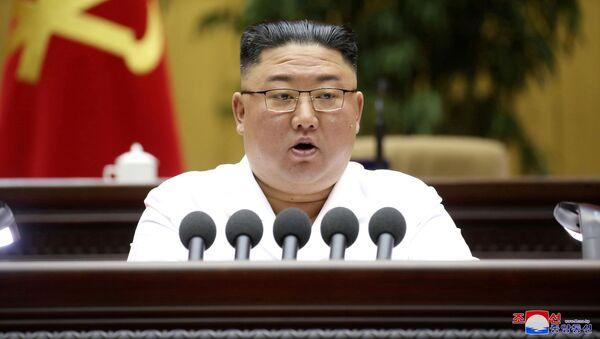 Глава КНДР Ким Чен Ын - Sputnik 日本