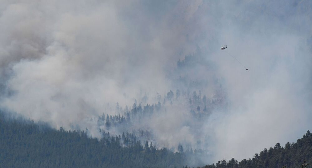 カナダ西部の森林火災