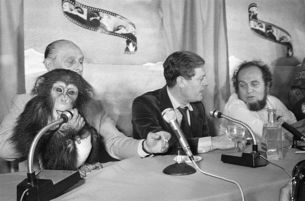 第31回映画祭で、映画『バイバイ・モンキー/コーネリアスの夢』の記者会見に臨むイタリアの俳優マルチェロ・マストロヤンニ氏(左)と監督のマルコ・フェレーリ氏(右)(1978年5月25日)