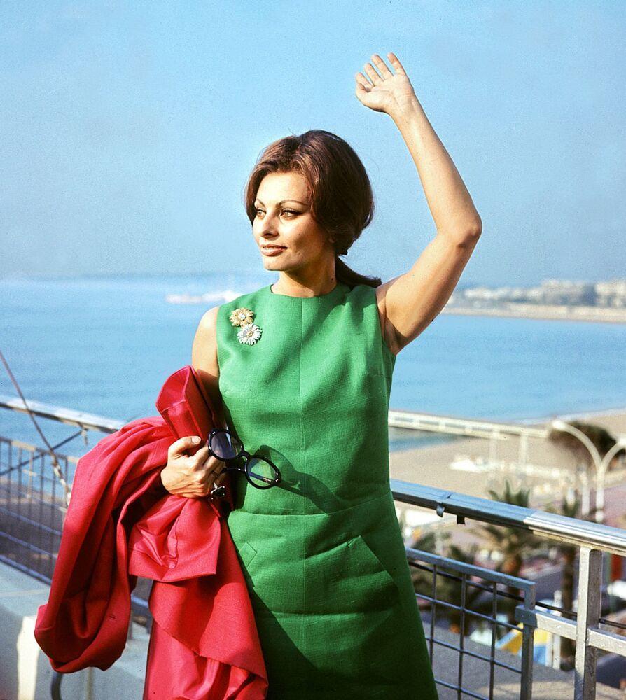 第17回映画祭に出席したイタリアの女優ソフィア・ローレン氏(1964年)