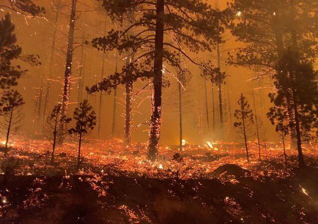 カリフォルニアの森林火災