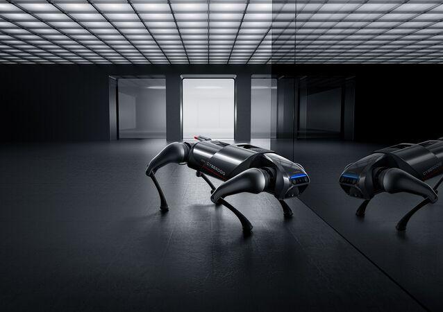 『CyberDog』