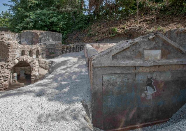 古代都市ポンペイで司祭の墓が発見される イタリア