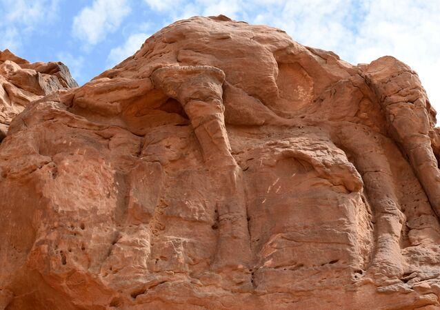 サウジアラビアの岩に刻まれた一連のラクダの彫像