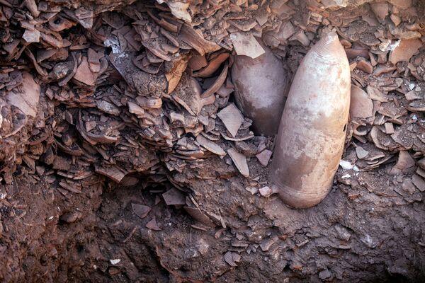 イスラエル・ヤブネで発見されたワイナリーの遺跡で、古代遺跡管理局が発掘した壺の破片 - Sputnik 日本