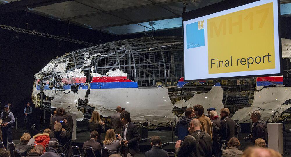 オランダ安全保障会議の結論は「アルマズ-アンテイ」社の説と一致 マレー機を撃墜したのは地対空ミサイル9М38