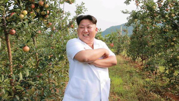 北朝鮮 金正恩氏暗殺を組織した同胞をビデオで公開【動画】 - Sputnik 日本