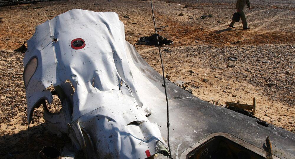 露大統領府、シリアの作戦と航空機墜落を結びつける必要なし