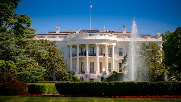 Здание Белого дома в Вашингтоне за забором - Sputnik 日本