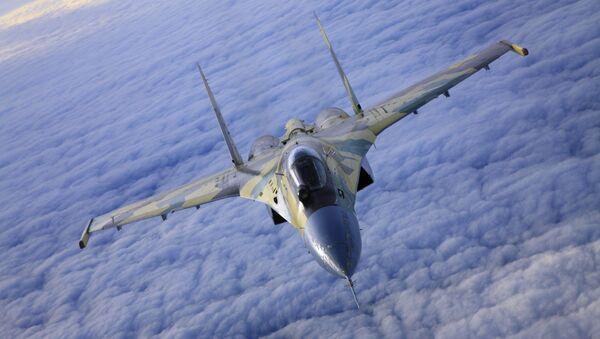 ロシアの「スホイ35」戦闘機 - Sputnik 日本