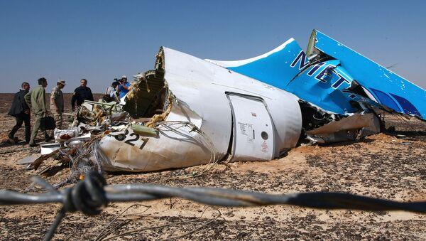 エジプト上空でロシア機を爆破したのはトルコの民族主義組織か? - Sputnik 日本