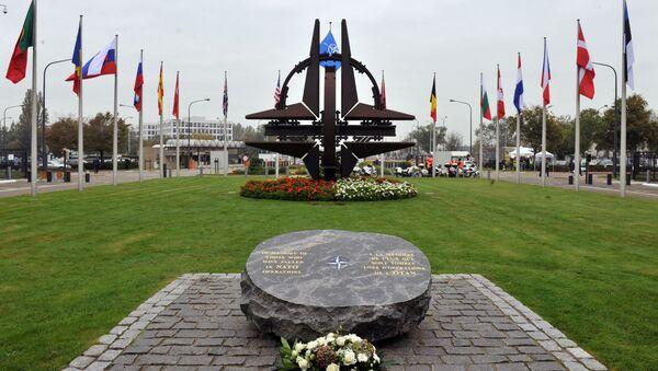 NATOはEUに必要か?意見が分かれる - Sputnik 日本