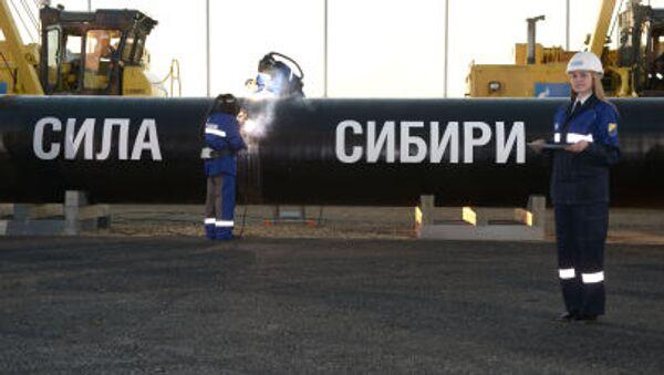 露中ガスパイプライン「パワー・オブ・シベリア」、93%が建設完了 - Sputnik 日本