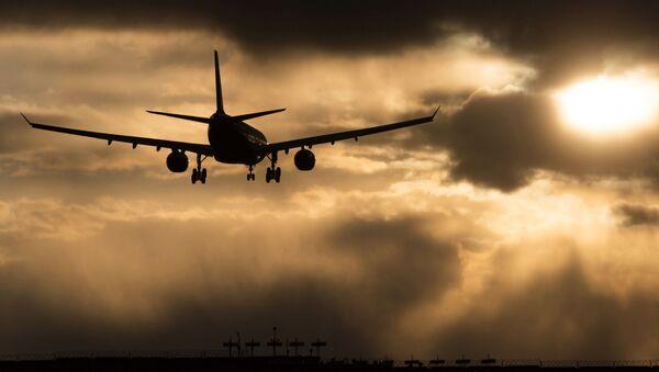 コーヒーがこぼれて旅客機が緊急着陸 - Sputnik 日本