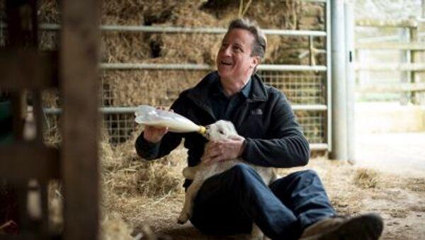 孤児になった子羊にエサを与える英キャメロン首相。 - Sputnik 日本
