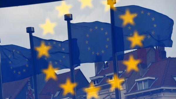 英仏独世論調査 右派政党の躍進は政府の不機能に関係 - Sputnik 日本