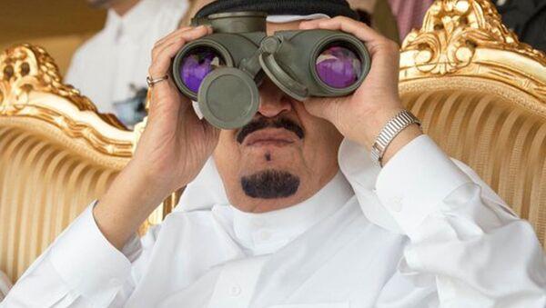 サウジアラビア、原油減産の条件述べる - Sputnik 日本