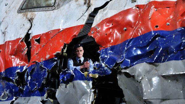 マレーシア機撃墜の証拠は「うわさ」=マレーシア政府 - Sputnik 日本
