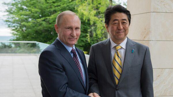 露日首脳会談、プーチン大統領が日本は重要なパートナー、政治経済で両国は注目を要する問題を抱えている - Sputnik 日本