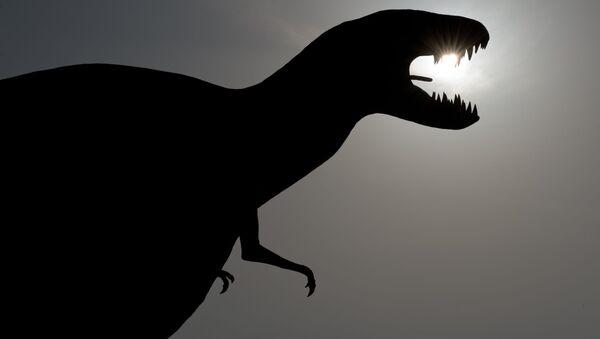 中国で新種恐竜の足跡化石が発見 「のび太」に由来して命名 - Sputnik 日本