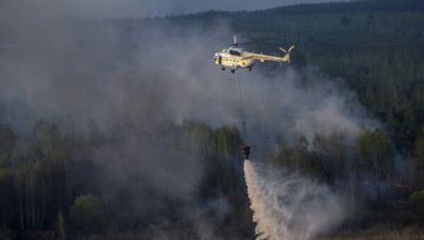 チェルノブイリ原発隔離ゾーンで火災 - Sputnik 日本