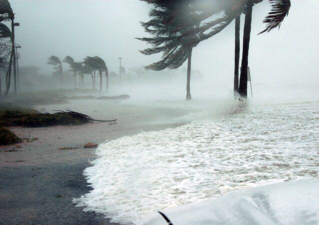 メキシコ、ハリケーン