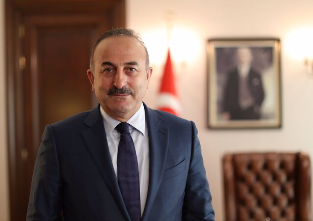 トルコ外相:「ロシアの参加なしにシリア紛争を完全に解決するのは不可能」