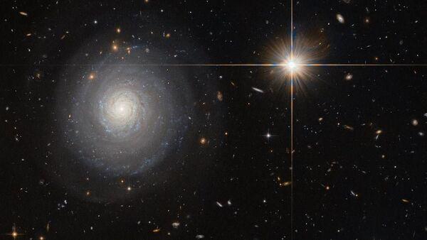 NASAの不思議な星の写真でネットが沸く 【写真】 - Sputnik 日本